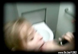 tania drilled in public toilets