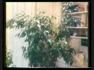 perverse fanny (9752) full vintage movie